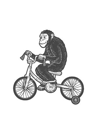 Постер Шимпанзе на велосипеде  - фото