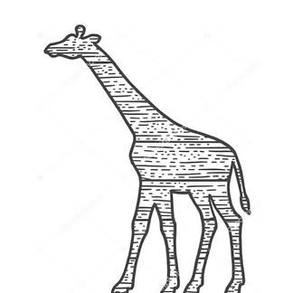 Постер Силуэт жирафа