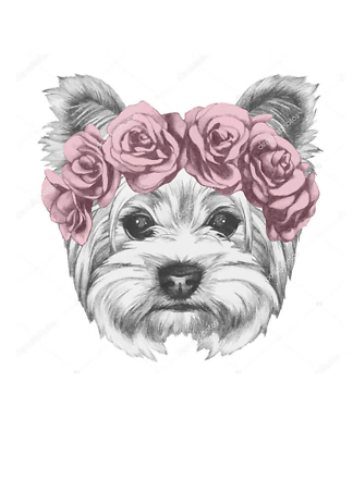 Постер Собака в венке из роз  - фото
