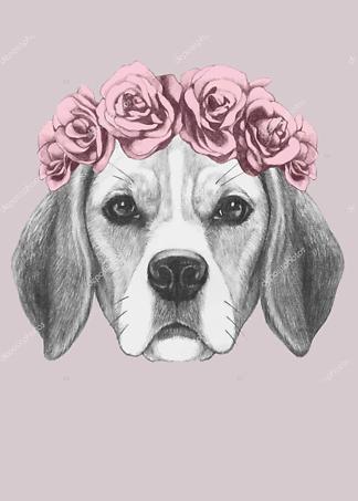 Постер Собака в венке на розовом фоне  - фото