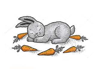 Постер Спящий кролик  - фото