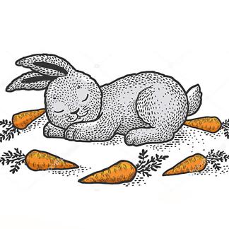 Постер Спящий кролик
