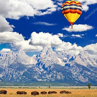 Постер Стадо бизонов и воздушный шар