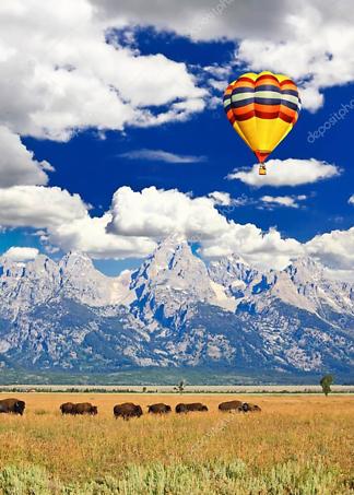 Постер Стадо бизонов и воздушный шар  - фото