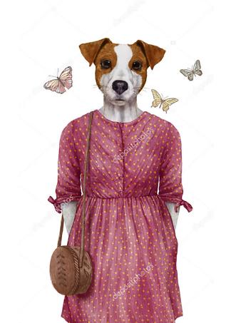 Постер Терьер в платье  - фото