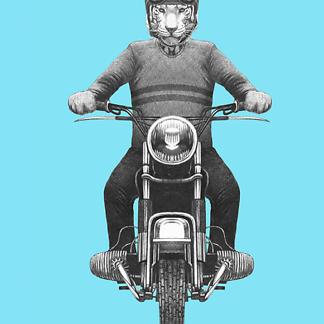 Постер Тигр мотоциклист