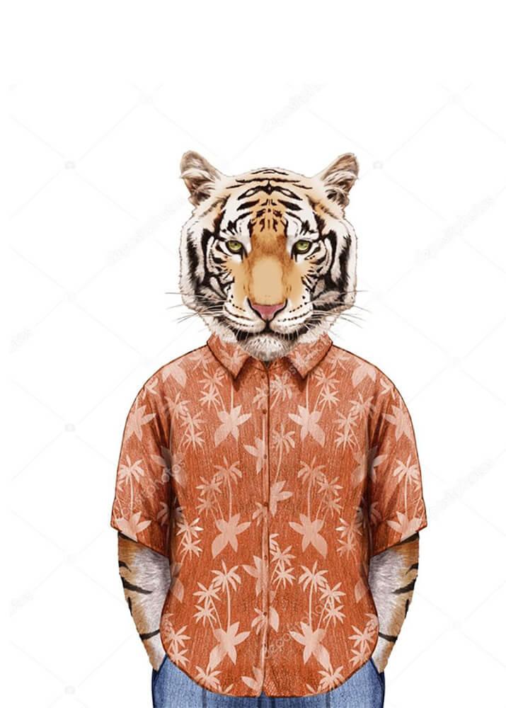 Постер Тигр в рубахе  - фото