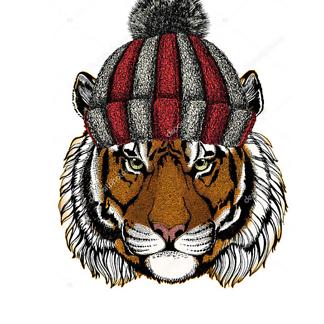 Постер Тигр в шапке