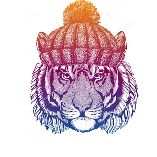 Постер Тигр в шапке яркий