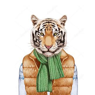 Постер Тигр в жилете