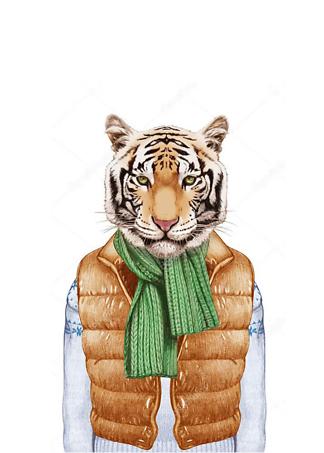 Постер Тигр в жилете  - фото