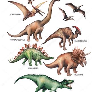 Травоядные и хищные динозавры