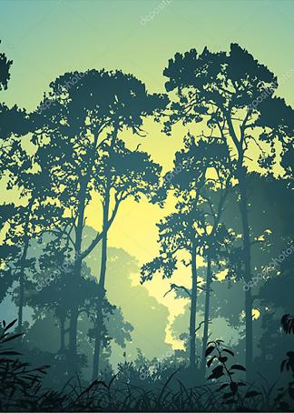 Постер Утро в лесу  - фото