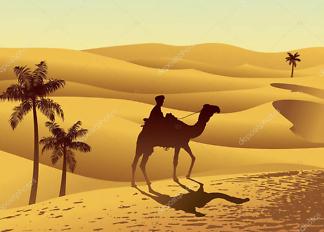 Постер Верблюд  - фото