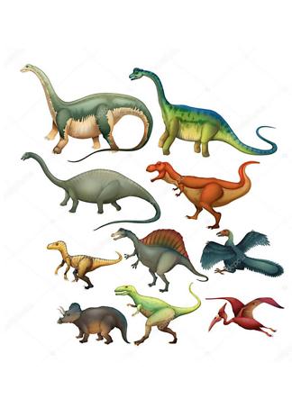 Постер Виды динозавров  - фото