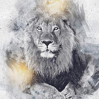 Винтажный рисунок льва