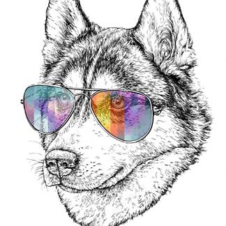 Постер Волк в цветных очках