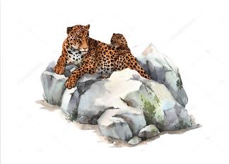 Постер Ягуар на камне  - фото