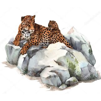 Постер Ягуар на камне