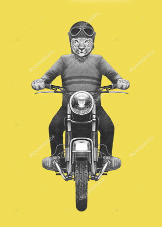 Постер Ягуар на мотоцикле  - фото