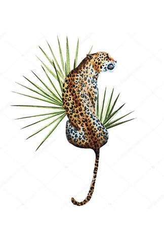 Постер Ягуар с листом пальмы  - фото