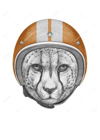 Постер Ягуар в шлеме  - фото