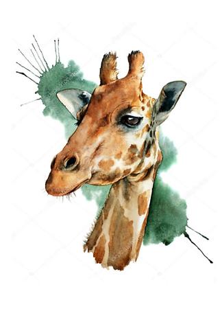 Постер Жираф на акварельном фоне  - фото