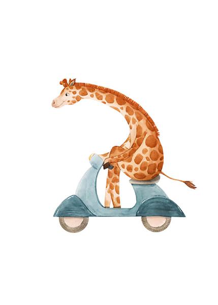 Постер Жираф на мопеде  - фото
