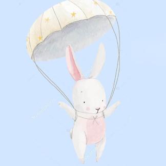 Постер Заяц на парашюте