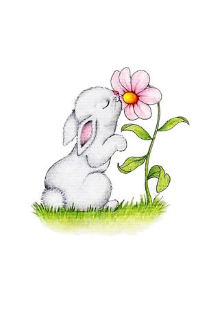 Постер Заяц нюхает цветок  - фото