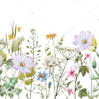 Наклейка цветы Полевые  - фото