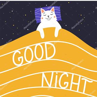 Спокойной ночи  - фото