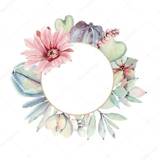 Наклейка цветы суккулента Рама для зеркала  - фото