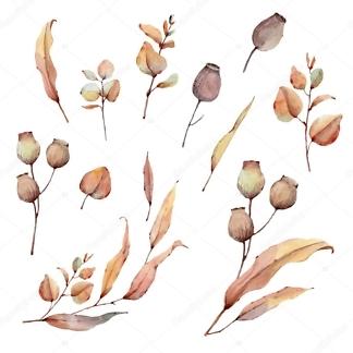 Наклейка Цветы осенние  - фото