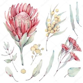 Наклейка Цветы экзотические  - фото