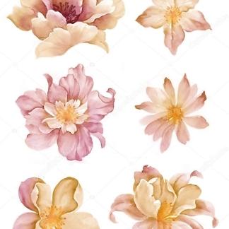 Цветы наклейки бежевые  - фото