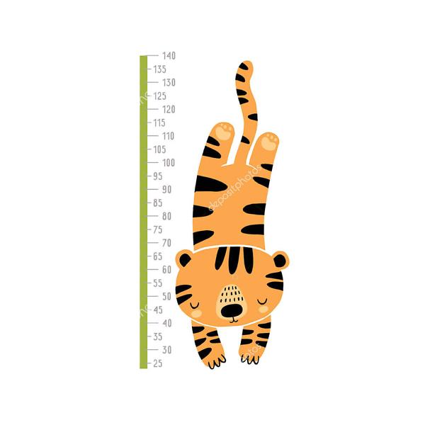 Ростомер Тигр