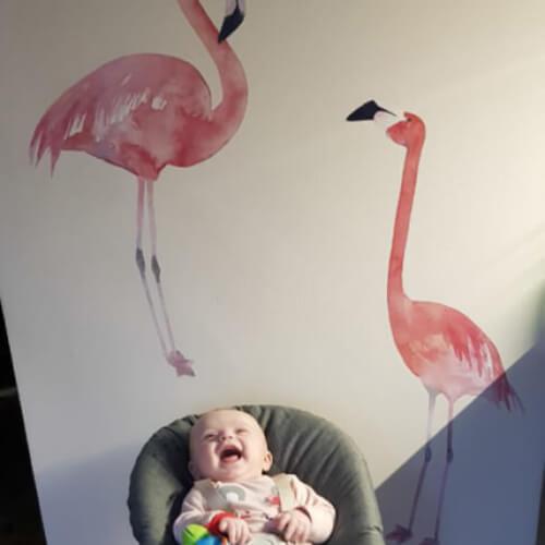 Фламинго Фото отзыва 1