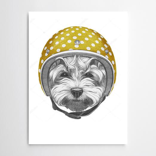 Постер Собака в желтом шлеме - фото 11