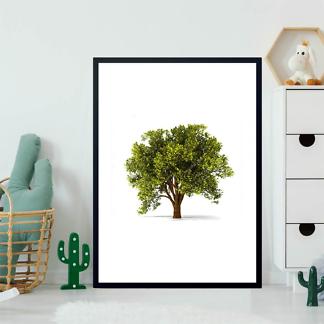 Постер Фото дерева  - фото 2