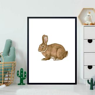 Постер Кролик в цвете  - фото 2