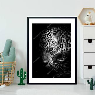 Постер Леопард в темноте  - фото 2