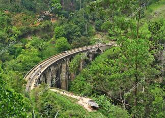 Картина мост в лесу  - фото