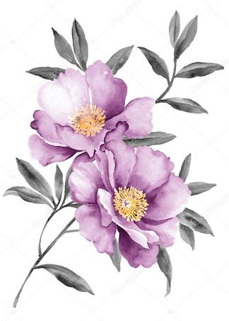 Постер акварельный рисунок цветка  - фото