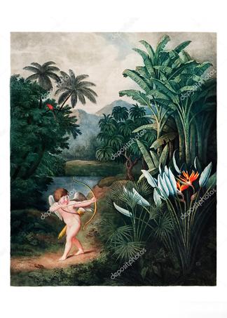 Картина купидон в тропиках  - фото