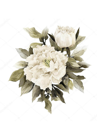 Картина белые пионы  - фото