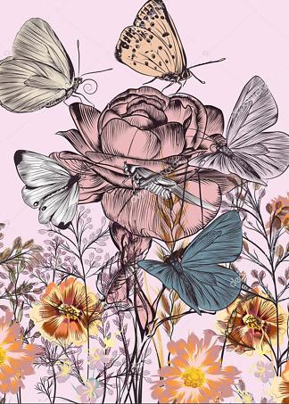 Постер бабочки  - фото