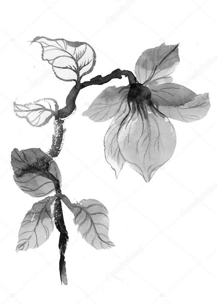 Постер монохромный цветок  - фото
