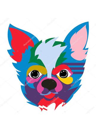 Постер разноцветная мордочка  - фото