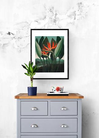 Постер винтажная иллюстрация тропических цветов  - фото 2